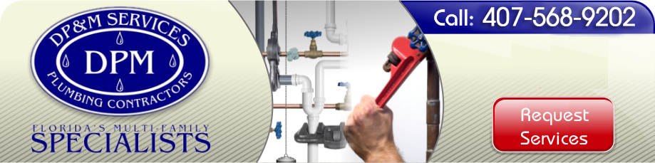 Lake Buena Vista Plumbing Contractor